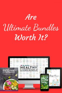 Are Ultimate Bundles Worth It?